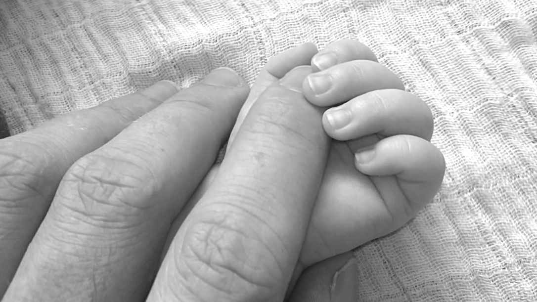 close up photo holding hands of baby and human